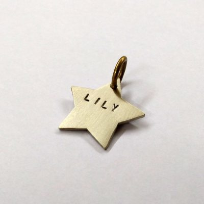Personalized Silver Star Dog Collar ID
